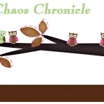 Common Chaos Chronicle new blog header