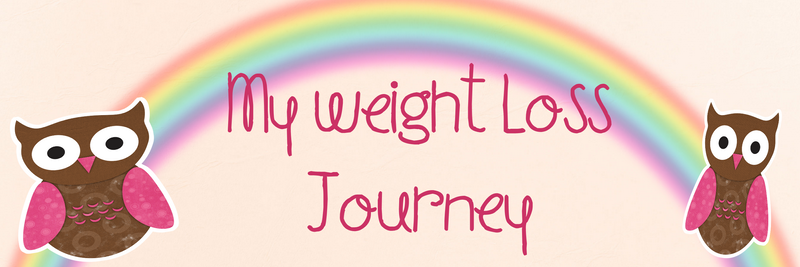My Weight Loss Journey Page Title 800x600 Common Chaos