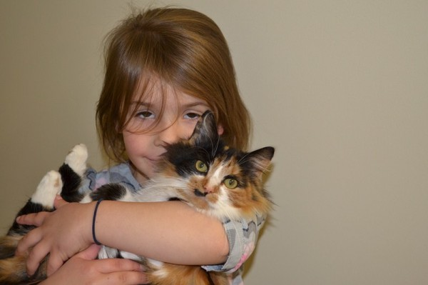 Our Cat Chilli with Veruca