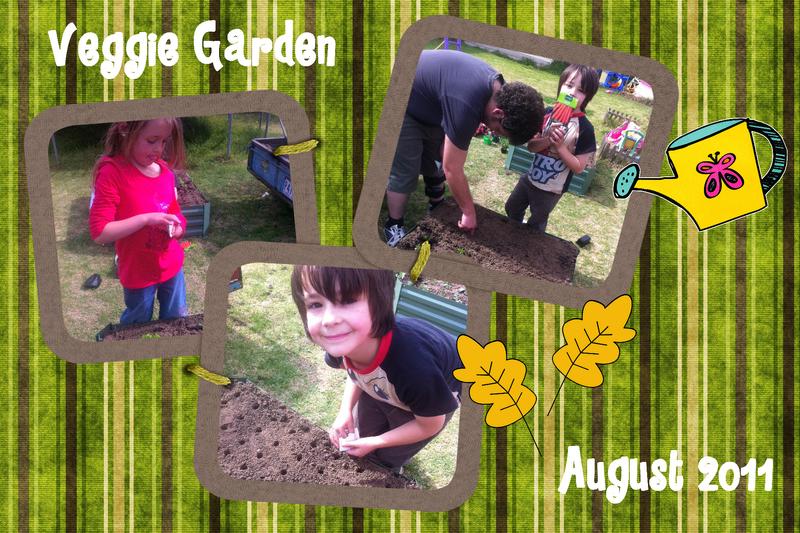 Veggie Garden 1