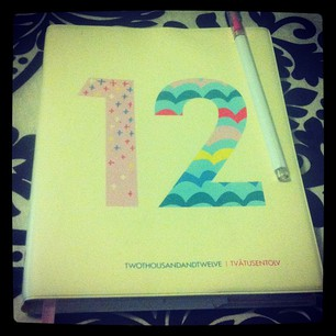 My 2012 Diary