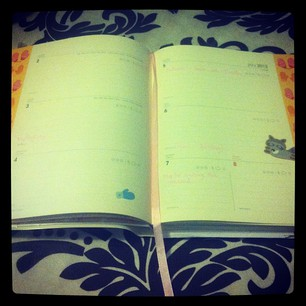 My 2012 Open Diary