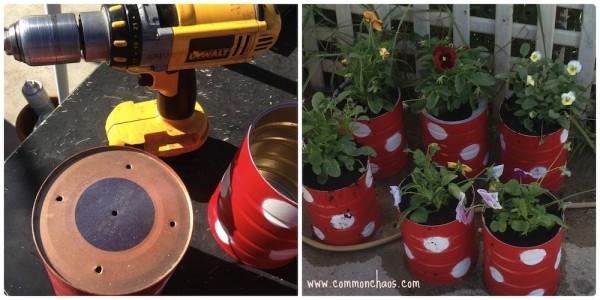 CCC Planter Tins 8
