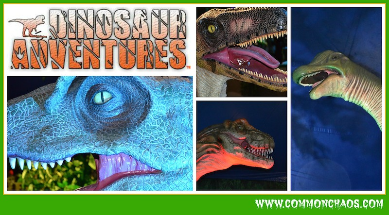 Dinosaur Adventures Close Up